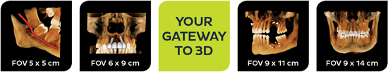 Your Gateway to 3D